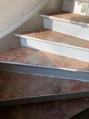 Treppe Ochsenblut schleifen Mahlow bei Berlin