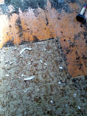 Dielen mit verklebten Teppich und Ochsenblut Frohnauer Strasse Hohen Neuendorf bei Berlin