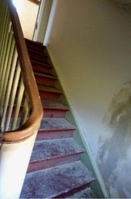 Dielen Treppen schleifen Altglienicke Berlin