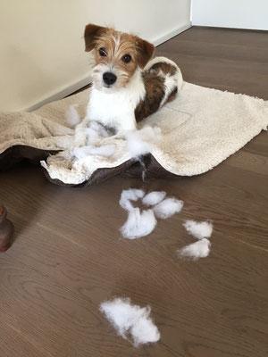 Eine Decke wurde zerlegt..