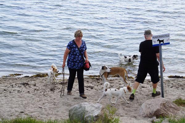..und am Strand von Maasholm