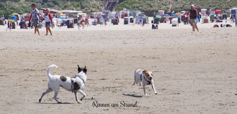 ein Sprint am Strand