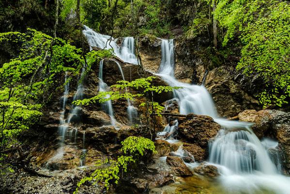 Wasserfall im Lainbachtal / Deutschland (Bildnummer 759743-2)