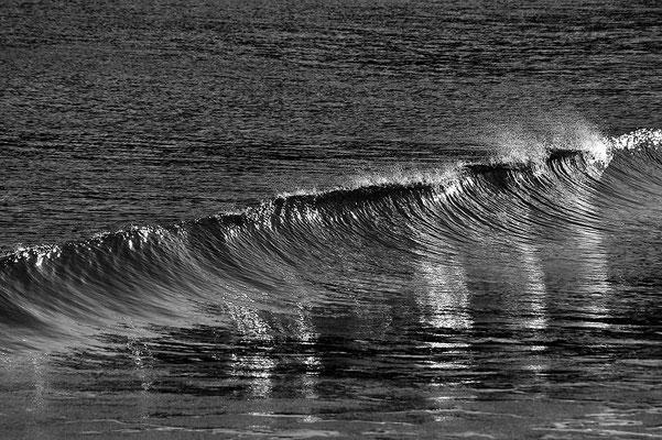 Welle am Südpazifik / Neuseeland (Bildnummer 8017)