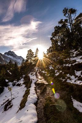 Erste Sonnenstrahlen im Frühling, Pfad zum Lautersee / Deutschland (Bildnummer 5940)