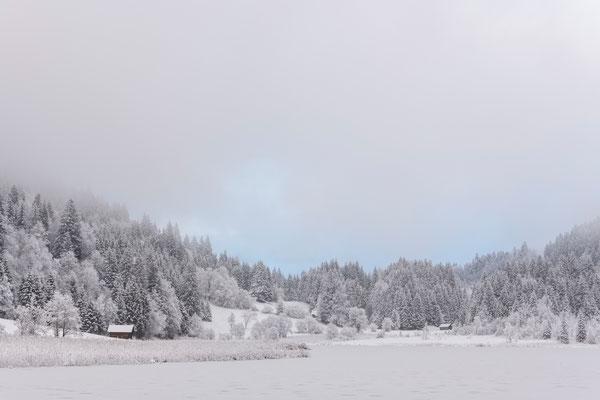 Sanftes Morgenlicht während es schneite