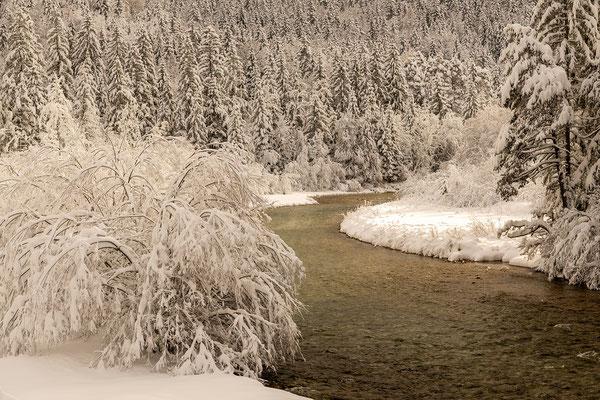 Winter an der Isar