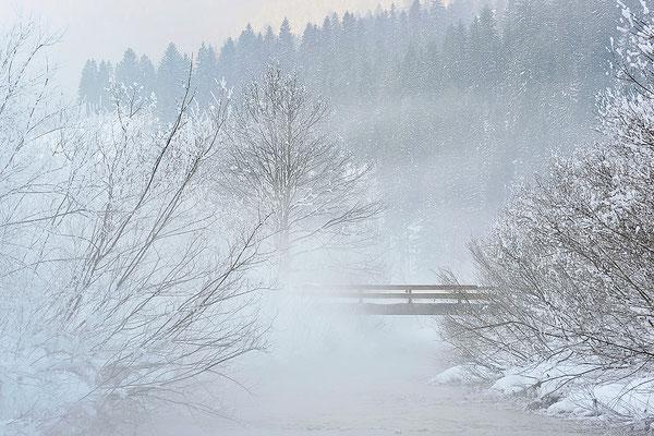 Nebelige Winterstimmung bei Bayrischzell / Deutschland (Bildnummer 110201_4513)