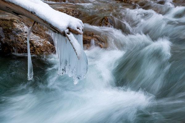 Eiszapfen am Baumstamm II
