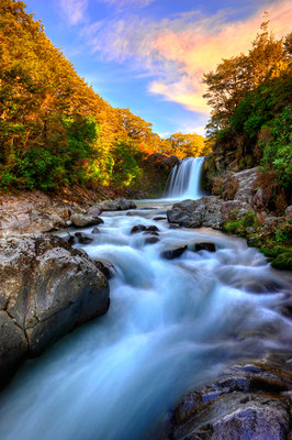 Wasserfall des Whakapapanui Stream / Neuseeland (Bildnummer 5196_197)