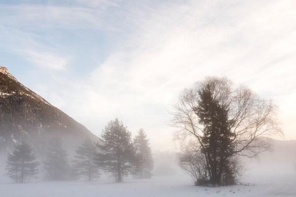 Nebelstimmung am Achensee (Bildnummer 811240)