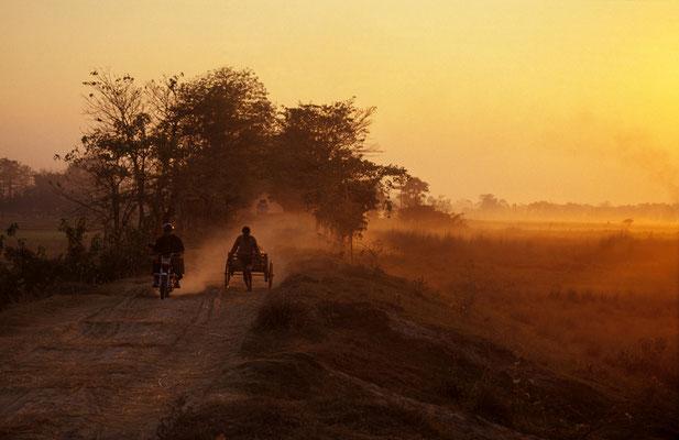 Abendlicht auf der Flussinsel Majuli / Indien (Diafilm Bildnummer 22212)