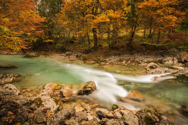 Herbstlicher Bachlauf im Engtal / Österreich (Bildnummer 9000)