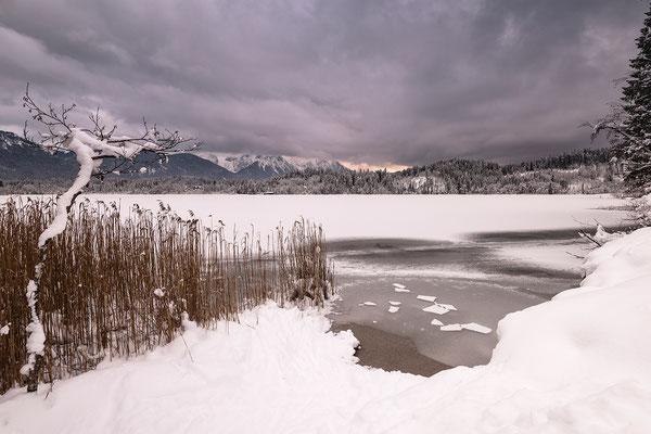 Am Ufer des winterlichen Barmsee (Bildnummer 811108)
