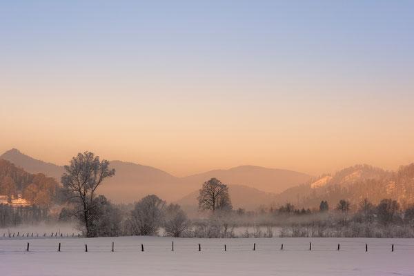 Winterlandschaft bei Bayrischzell / Deutschland (Bildnummer 110201_4413)