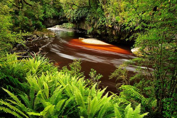 Moria Gate Arch, Felsbogen im neuseeländischen Dschungel mit Bachlauf (Bildnummer 5661)