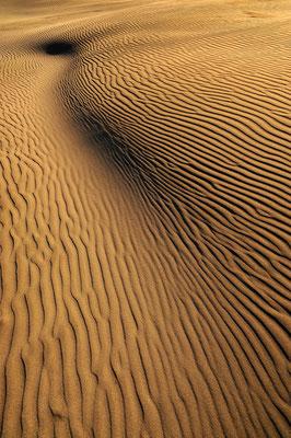 Muster in unberührtem Sand / Neuseeland (Bildnummer 7162)