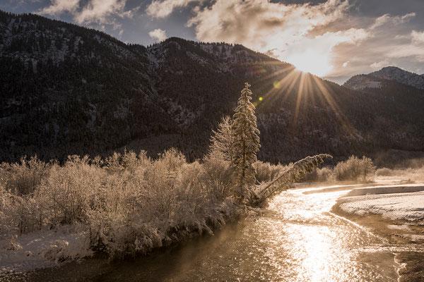 Goldenes Winterlicht an der Isar im Karwendel (Bildnummer 810189)