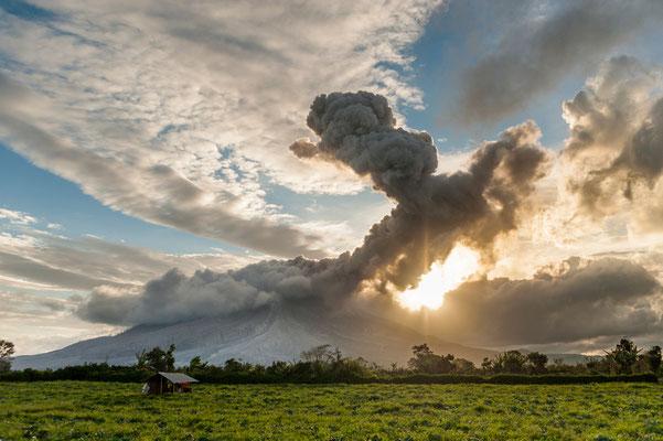 Vulkanausbruch des Mt. Sinabung (2460m) auf Sumatra bei Sonnenuntergang / Indonesien (Bildnummer 7000432)