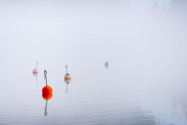 Bojen auf dem Achensee (Bildnummer 8887)