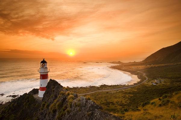 Der Leuchtturm von Cape Palliser / Neuseeland (Bildnummer 8494)