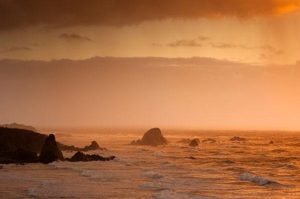 Lichtstimmung an der Westküste / Neuseeland (Bildnummer 5991)