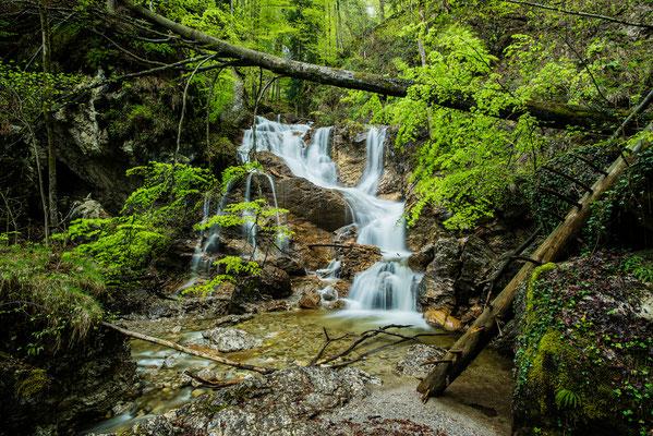 Wasserfall im Lainbachtal bei Kochel / Deutschland (Bildnummer 759780)