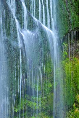 Detail des Korokoro Wasserfalles / Neuseeland (Bildnummer 9762_3)
