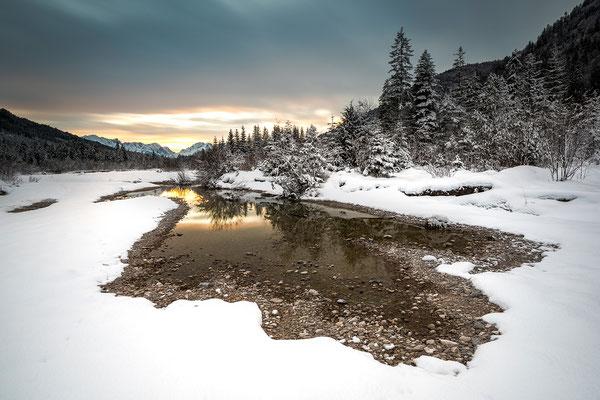 Winterliches Abendlicht in den Isarauen III (Bildnummer 8781)