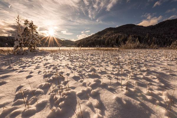 Goldenes Licht im Schild des Barmsee, Karwendel (Bildnummer 811023)