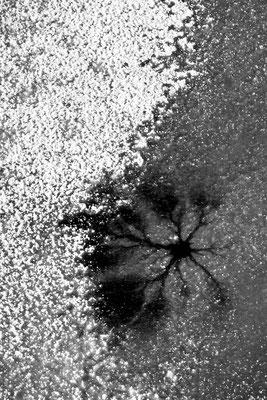 Loch im Eis / Deutschland (Bildnummer 0227)
