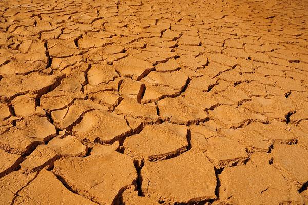 Ausgetrocknetes Flussbett / Israel (Bildnummer 100317_3293)