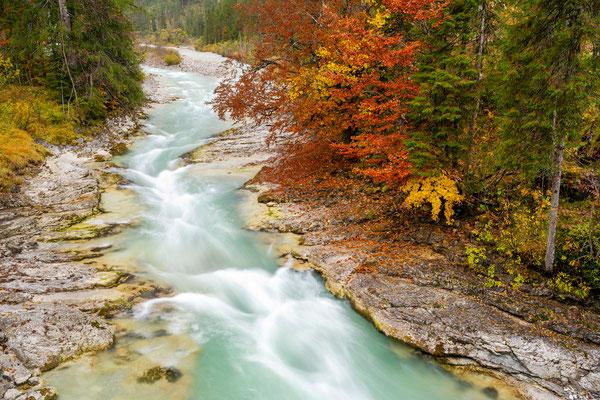 Herbstfarben am Rissbach 1