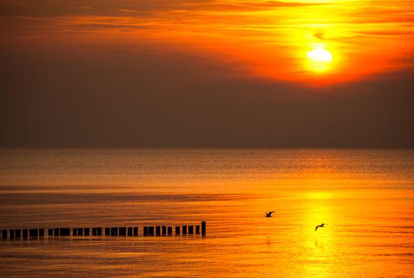 Abendstimmung an der Ostsee / Deutschland (Bildnummer 7001952)