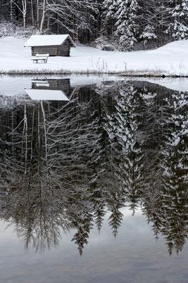Spiegelung am Ferchensee bei Mittenwald (Bildnummer 8261)
