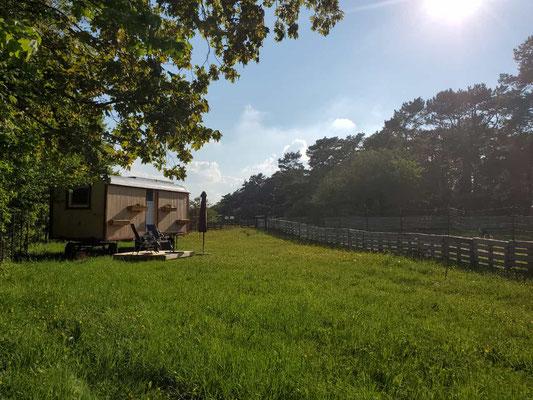 Hühnerloft, Schäferwagen, Bauwagen, Abenteuer, Abenteuerurlaub, Eifel, Auszeit, Natur, Nordeifel, Nettersheim, Urlaub auf dem Bauernhof