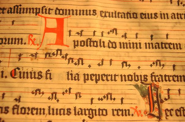 Pergamenthandschrift in einem Buch gefunden