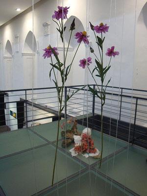 'happy dream shop' - VKU-Winterausstellung, Ausstellungsbeteiligung, Spitäle Würzburg, Empore, 2011