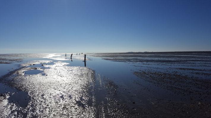 Der Wattweg zur Insel Neuwerk © FF.Cuxhaven-Duhnen