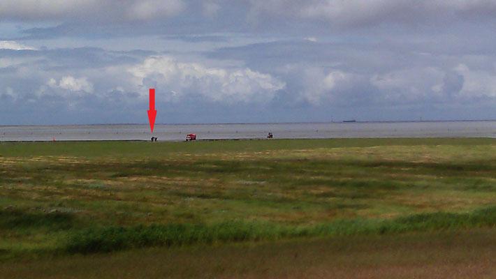 12.07.12 A - 2 Reiter vor der Duhner Neulandgewinnung vom Weg abgekommen © FF-Duhnen