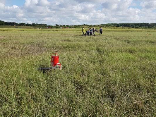 Das Grün der Salzwiesen täuscht, nur eine dünne Kruste liegt über dem grundlosen Schlick © FF-Duhnen