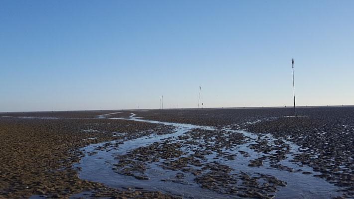 Der Elbe - Weser - Schiffahrtsweg kreuzt den Wattweg nach Neuwerk. Das flachste Hindernis. © FF.Cuxhaven-Duhnen