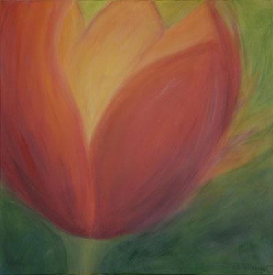 Tulpe 1 (60x60cm), verkauft