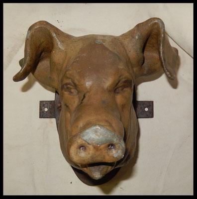 tete de cochon zinc