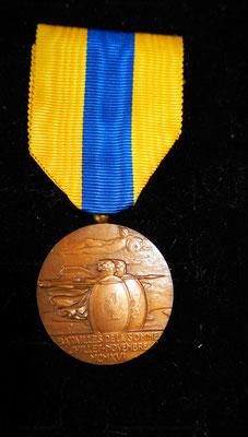 médaille de la Somme . prix: 60 euros