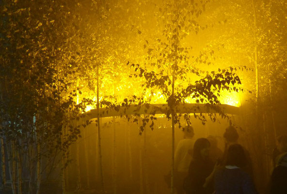 Eliasson / Vogt, Yellow Forest
