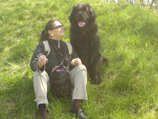 hundeschule-aargau-zorbas-niederweningen, Hundeschule, Hundetraining, Hundekurse, Hundeerziehung