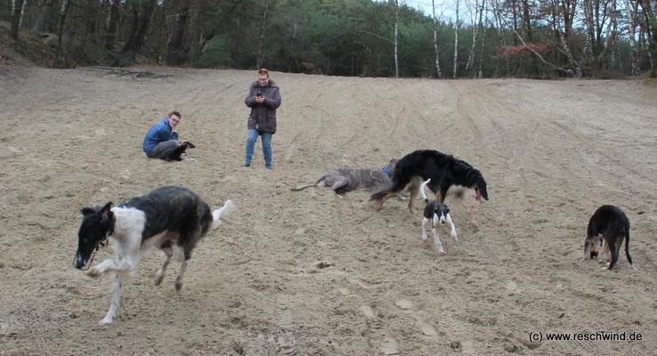 Im Sand kann man toll toben