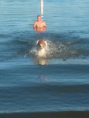 Unser Cowgirl macht Sommer Urlaub und ist nun eine Meerjungfrau Resch Wind Festival Fortuna (USA)