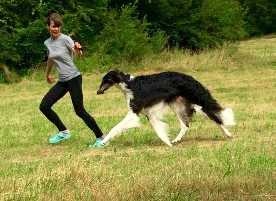 ... und wenn er läuft bekommen Beine Flügel .... Resch wind Exclusive Eremias